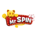 Mr Spin Logo