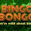 Bingo Bongo